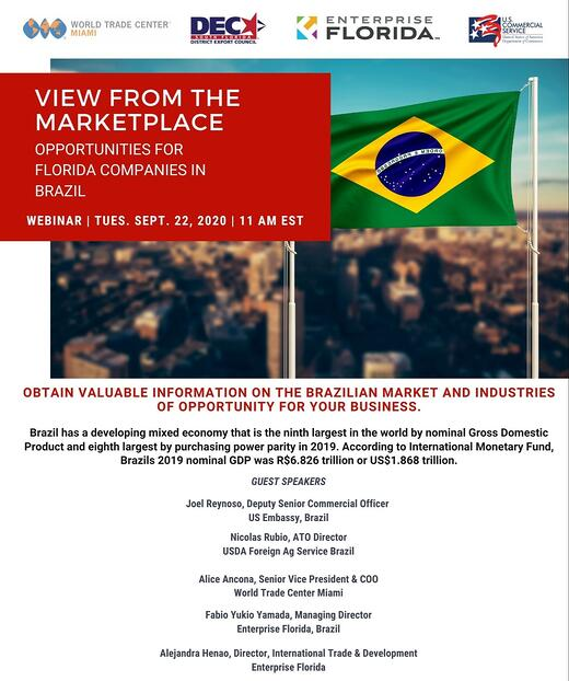 A View from the Marketplace - Opportunities for Florida Companies in Brazil (2)